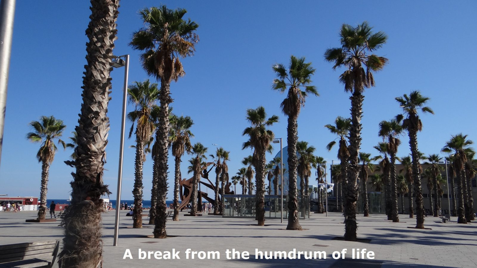 A break from the humdrum of life